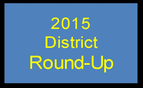 2015 Roundup Button4